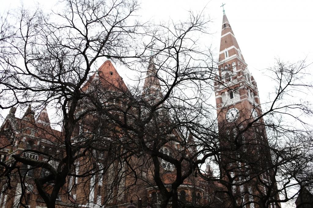 Szeged 7